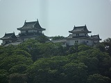 和歌山城.jpg